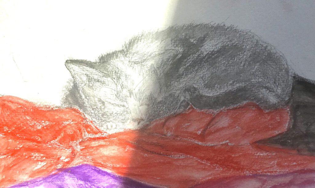 De kat slaapt door alles heen - Jet Hessels