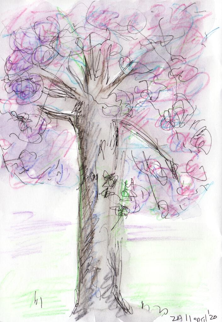 Cancanboom - Katelijne Brouwer