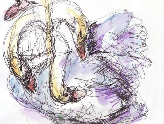 medusa knikkebolt