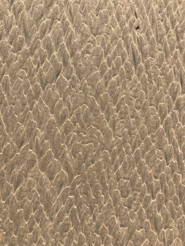 Sporen van de zee - jolanthe berretty