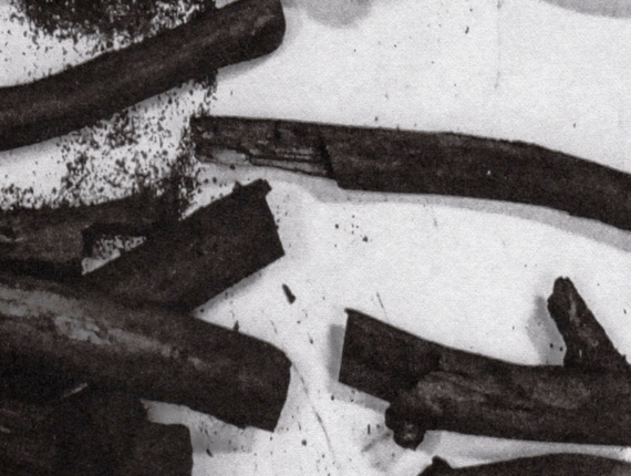 Verkenning in houtskool