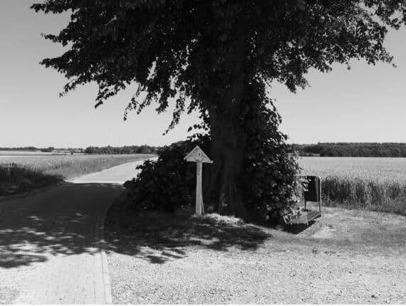 Zwart/wit fotografie; Weer naar buiten!